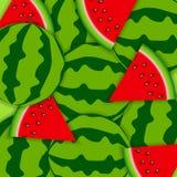 Bakgrund från vattenmelon också vektor för coreldrawillustration Arkivbilder