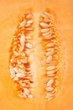 Bakgrund för textur för makro för cantaloupmelonmelonfrö Royaltyfria Bilder