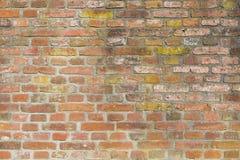 Bakgrund gammal murverktegelstenvägg Royaltyfria Foton