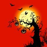 bakgrund halloween Arkivfoto