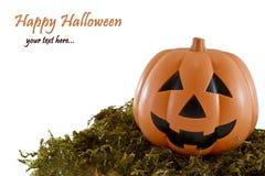 bakgrund halloween Royaltyfria Bilder