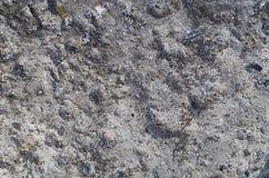 Bakgrund i form av en grov konkret yttersida Arkivfoto