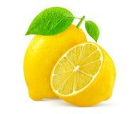 bakgrund isolerad citronwhite Arkivfoto