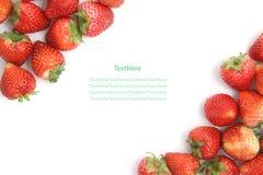 bakgrund isolerad jordgubbewhite Royaltyfri Bild