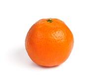 bakgrund isolerad mandarinwhite Arkivbild