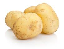 bakgrund isolerad ny potatiswhite royaltyfri bild