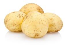 bakgrund isolerad ny potatiswhite arkivfoton