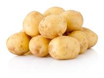 bakgrund isolerad ny potatiswhite royaltyfri fotografi