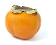 bakgrund isolerad orange persimmonwhite Royaltyfri Fotografi