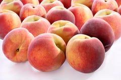 bakgrund isolerad persikawhite Royaltyfri Foto