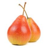 bakgrund isolerade en mogen white två för pears Royaltyfri Fotografi
