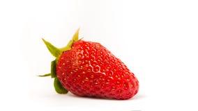 bakgrund isolerade jordgubbewhite royaltyfria bilder