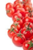 bakgrund isolerade mogna tomater Royaltyfri Foto