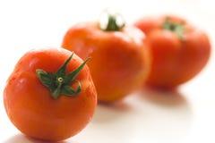 bakgrund isolerade tre vita tomater Arkivbild