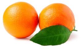 bakgrund isolerade white för apelsiner två Arkivbilder