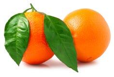 bakgrund isolerade white för apelsiner två Royaltyfria Bilder