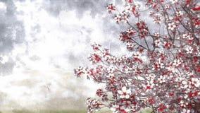 Bakgrund 4K för vattenfärg Sakura för körsbärsröd blomning arkivfilmer