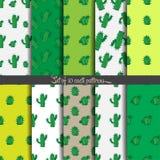 Bakgrund kaktusmodell Arkivfoton