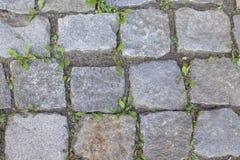 Bakgrund kullerstenvägräkning close-up3 fotografering för bildbyråer