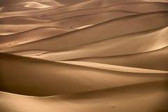 Bakgrund med av sandiga dyn i öken royaltyfri fotografi