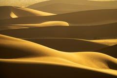 Bakgrund med av sandiga dyn i öken arkivfoton
