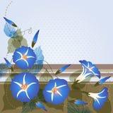 Bakgrund med blå morgonhärlighet royaltyfri illustrationer