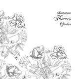 Bakgrund med buketten av flowers-01 Arkivfoton