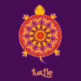 Bakgrund med den afrikanska sköldpaddan Royaltyfria Foton