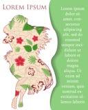 Bakgrund med den hawaianska flickan på papper och ställe för text Arkivbilder