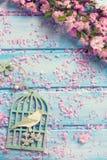 Bakgrund med eleganta rosa färger blommar på blåa träplankor Arkivfoto