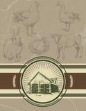 Bakgrund med etiketten för slakt Symboler av kanin, höna, hane, stock illustrationer