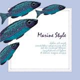 Bakgrund med fiskar fiska skolan Mall för tryckdesign Royaltyfri Bild