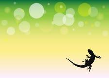 Bakgrund med geckosilhouetten Arkivfoton