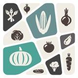 Bakgrund med grönsaker royaltyfri illustrationer