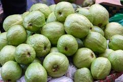 Bakgrund med guavafrukt som är fullvuxen i vändkretsdel 2 royaltyfri bild