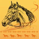 Bakgrund med hästen Arkivbild