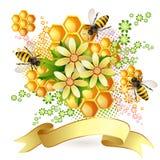 Bakgrund med honungskakan Royaltyfria Foton