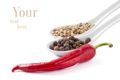 Bakgrund med isolerade kryddor Royaltyfri Bild