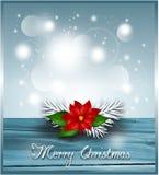 Bakgrund med julstjärnan Royaltyfri Foto