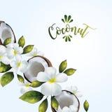 Bakgrund med kokosnöten och den blom- modellen Arkivbilder