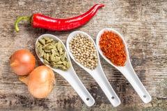 Bakgrund med kryddor och grönsaker på planka Royaltyfri Fotografi