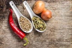 Bakgrund med kryddor och grönsaker på trä Arkivbild