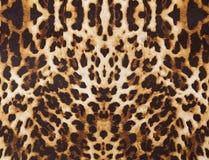 Bakgrund med leopardtextur Royaltyfri Bild