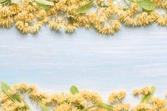 Bakgrund med linden blommar på en trätabell Arkivfoton