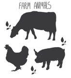 Bakgrund med monochromatic modelllantgårddjur ko och svinhöns blir rädd Arkivfoto