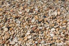 Bakgrund med olika färghavsstenar Pebbles som en bakgrundsbild Royaltyfri Foto