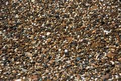Bakgrund med olika färghavsstenar Pebbles som en bakgrundsbild Royaltyfri Bild