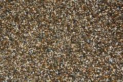 Bakgrund med olika färghavsstenar Pebbles som en bakgrundsbild Arkivbild