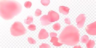 Bakgrund med realistiska rosa färgroskronblad royaltyfri illustrationer