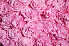 Bakgrund med rosa pappers- blommor Royaltyfri Bild